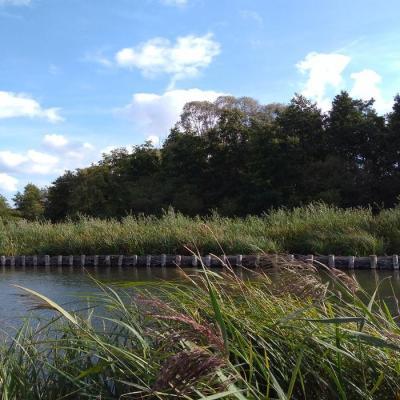 19 septembre - Le marais de Tirancourt